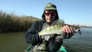Диалоги о рыбалке на нижней волге
