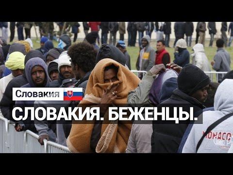 Беженцы в Словакии