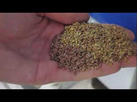 LLC TPC AGROMASH Аэродинамический сепаратор зерна