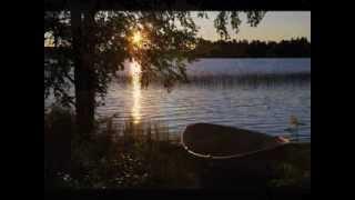 Willie Nelson Moment of Forever Video