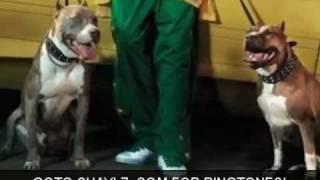 Snoop Dogg - Wrong Idea featBad Azz KoKane amp Lil HD - http://www.Chaylz.com