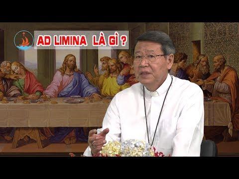 Đức Giám mục Phêrô Nguyễn Văn Khảm trao đổi về ý nghĩa Ad Limina