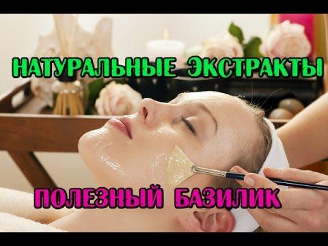 DIY: Масляный экстракт Базилика// Экстракты натуральные// Домашняя косметика