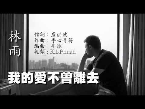 《我的愛不曾离去》 演唱 : 林雨