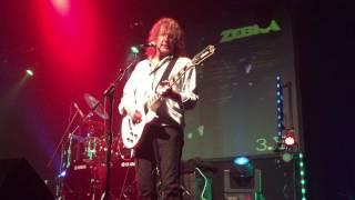 "Zebra ""One More Chance"" Live in Largo FL 102216"