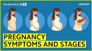 Pregnancy Symptoms and Stages:1st, 2nd and 3rd Trimester || Practo