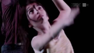 DECEMBER DANCE 18 / Dancing Down Under / do 06 dec. - zo 16 dec. 2018
