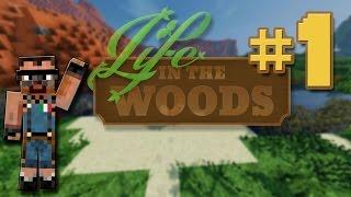 preview picture of video '[ITA] Minecraft Life in the Woods ep.1, un Mondo da Spettacolo'