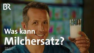 Soja-, Hafer-, Reis-, Mandelmilch - Was kann Milchersatz? | Gut zu wissen