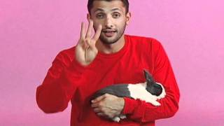Kindness Animals - Hurray For Baba Ali - Video 8