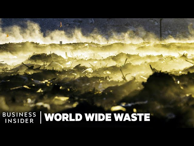 Why More Cities Should Compost Their Food Waste | World Wide Waste