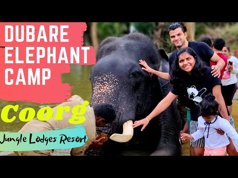 Dubare Elephant Camp Coorg, Karnataka, India