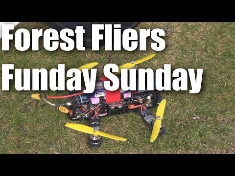 forest-fliers-of-rc-planes-funday-sunday