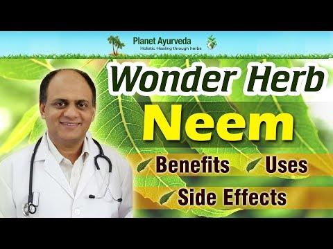 Video Wonder Herb- Neem Benefits, Uses and Side Effects