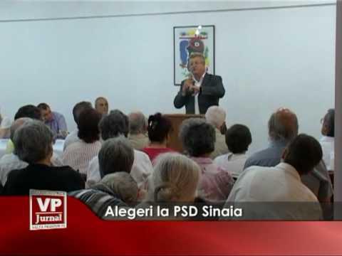 Alegeri la PSD Sinaia