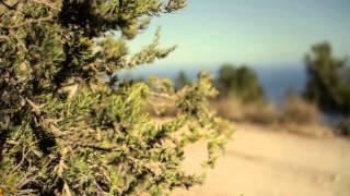 Видео: Горные велосипеды CUBE