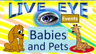 Babies Pets Super Cute - Fun Love and Play