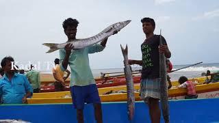 Fishing Boat Big Fishermen With Fish Net Catch