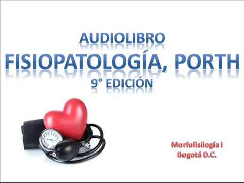 Metro de la presión arterial MMT-3