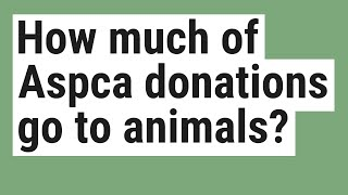 How much of Aspca donations go to animals?
