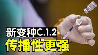 C12病毒变种在9国发现 新变种传播性更强【时事追踪】