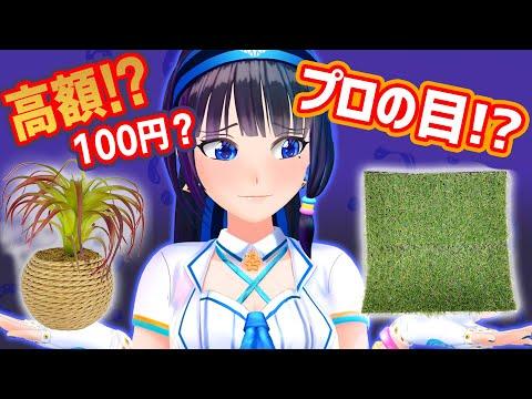 【ほぼ100円ショップ】草だらけ!?100均商品の中から高額商品を探せ!【富士葵】