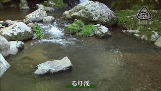 川遊び るり渓