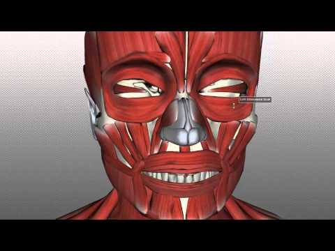 Paraffin mask para sa pagbabasa ng mukha