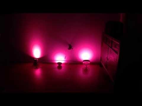 Philips Hue Wireless Bloom vs. Iris vs. Par16 Bulb in Action
