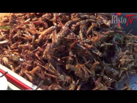 Malattie di piccoli parassiti di pesce