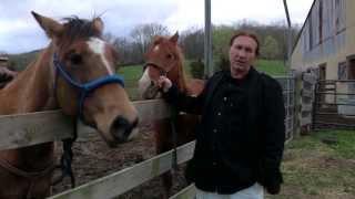 Rednecks + Culchies Official Trailer