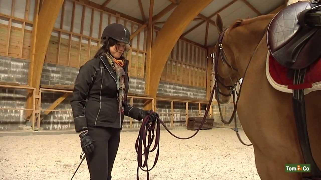 De verzorging en dagelijkse beweging - Mijn paard