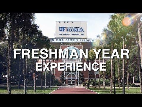 My UF Freshman Experience
