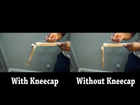 What Are Kneecaps For? | The Importance of Mobilization (Extended)