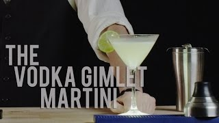 How To Make The Vodka Gimlet Martini - Best Drink Recipes