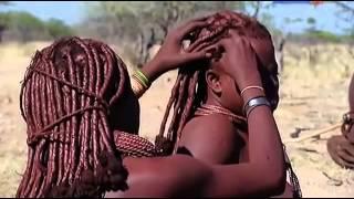 Жизнь по законам саванны Намибия 2013