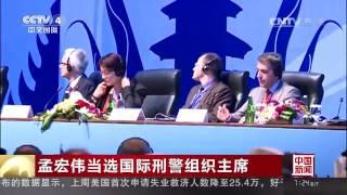 孟宏伟出任ICPO国际刑警组织主席百年来中国人首次掌舵