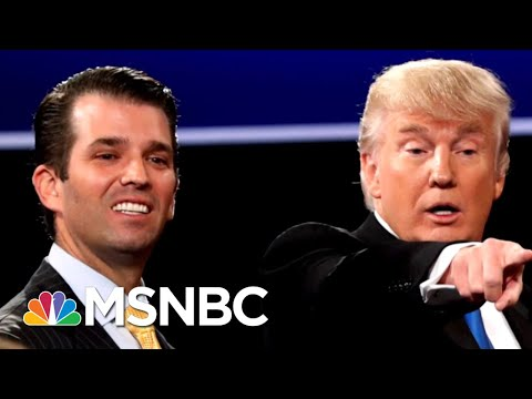 New Details On Donald Trump Jr.'s Meeting With Russians At Trump Tower | The 11th Hour | MSNBC