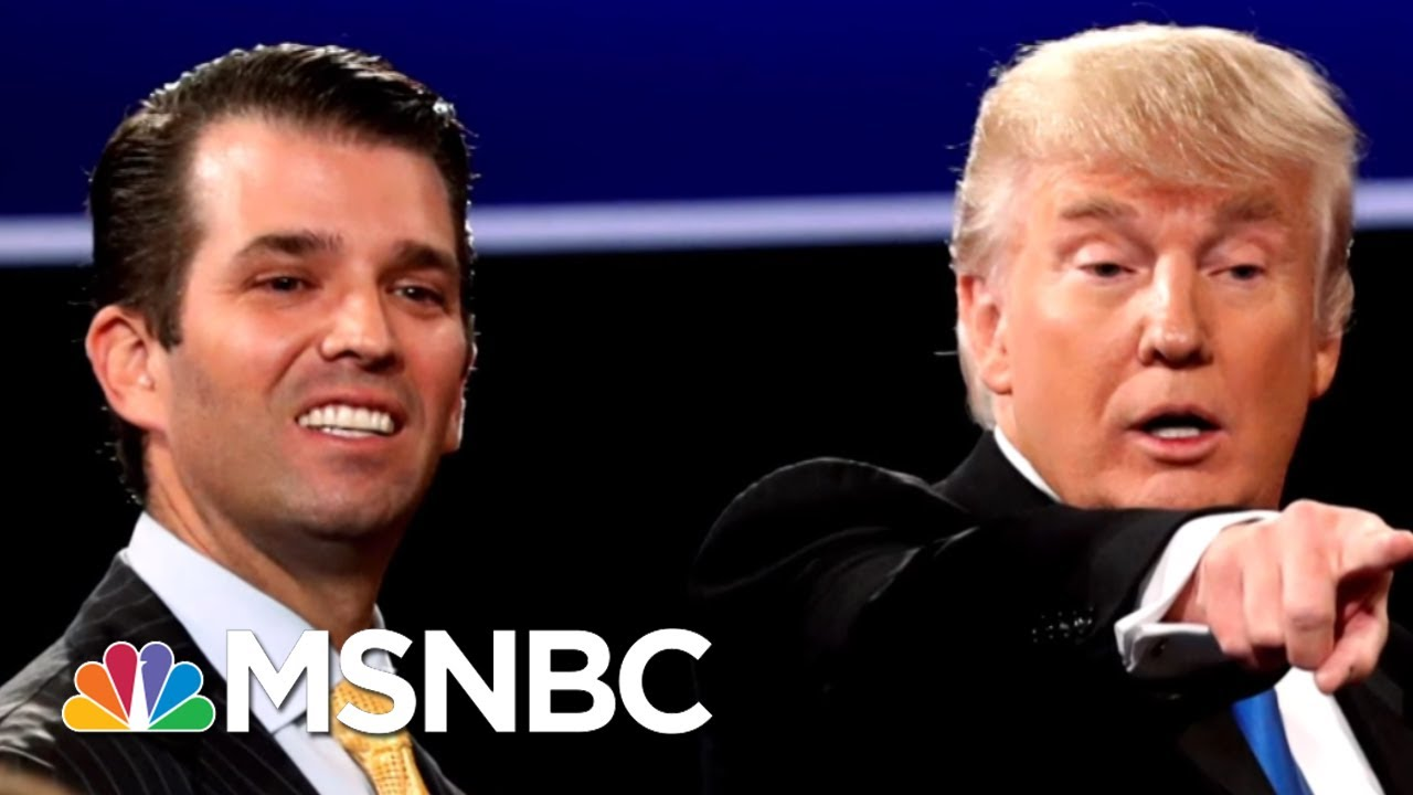 New Details On Donald Trump Jr.'s Meeting With Russians At Trump Tower | The 11th Hour | MSNBC thumbnail