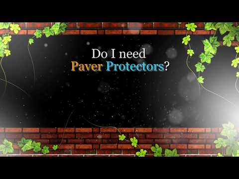 If you've got pavers you need my service. Whether you want it or not, you need it.
