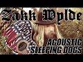 Download Video ZAKK WYLDE performs SLEEPING DOGS acoustic