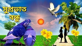 Latest Bengali Good Morning Images For Whatsapp Free Download Hd
