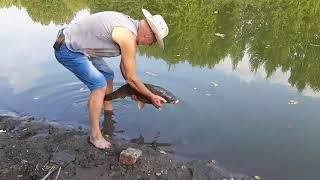 Роса база отдыха и рыбалки