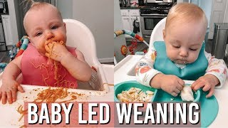 BABY LED WEANING FOR BEGINNERS 2018 | TIPS