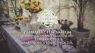 Pálmaház Herbárium-az illatok birodalma