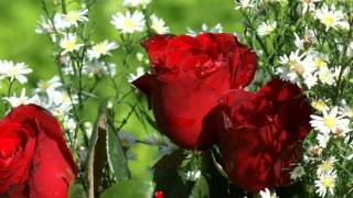 Jaan Le Loongi [Full Song] (HD) - Ravan Raaj