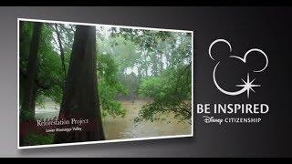 Reforestation -- Lower Mississippi Valley