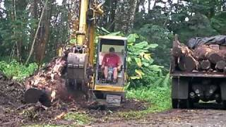 preview picture of video 'Nanawale stump clearing'
