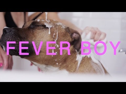 Fever Boy (Song) by Femme