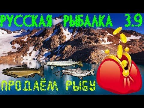 Русская рыбалка 3.9. Патагонское озеро. Можно ли заработать?